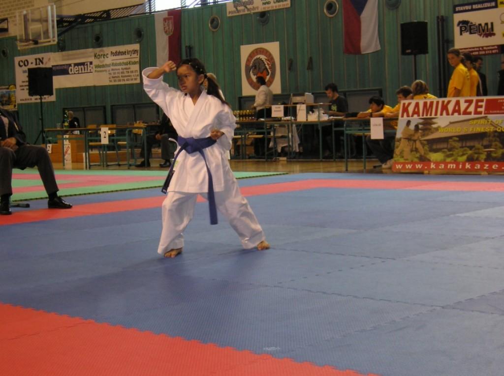judo vs karate